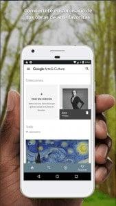Google Arts Play Store