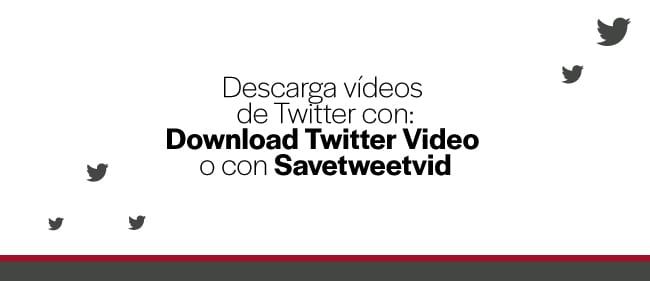 descarga-videos-de-twitter-con-download-twitter-video-savetweetvid